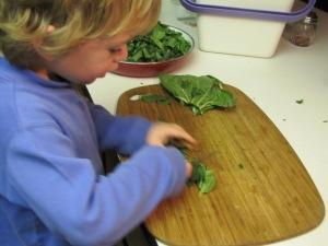 chopping chopping chopping